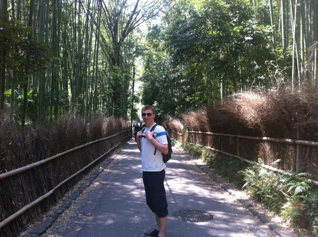 Arashiyama's Bamboo